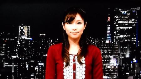 Terakawanatumi_wing_20131229190223