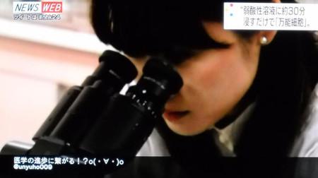 Obokataharuko_stap_20140201135827