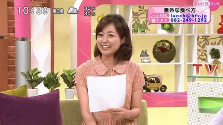 Nishinamizuho_terebiharanchi_201407