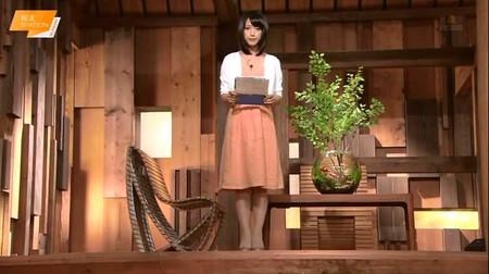 Takeuchiyoshie_houdoustation_2014_2
