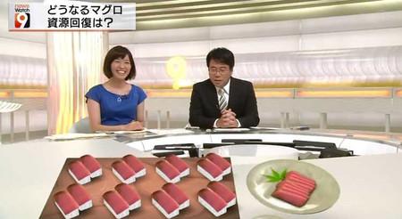 Nakamurakeiko_ookoshikensuke_201408