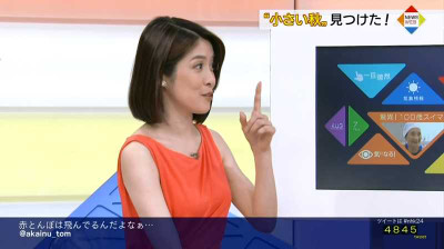 Kamakurachiaki_newsweb_201408110057