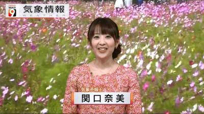Sekiguchinami_newswatch9_2014092222