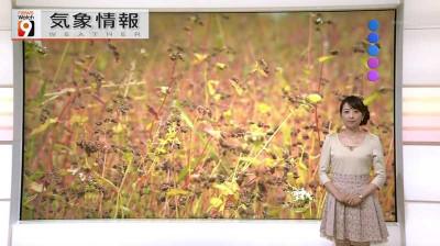Sekiguchinami_newswatch9_2014100316