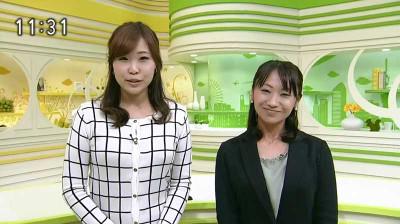 Hiyamachihiroonoharanami_2014102120