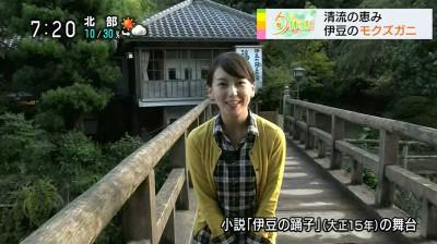 Wakudamayuko_syuntaikan_nhk_2014102
