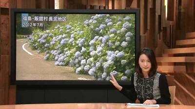 Ogawaayaka_houdoustation_1411152355