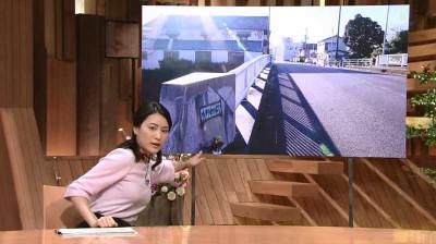 Ogawaayaka_houdoustation_1411231805