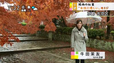 Ushidamayu_machikado_nhk_1411300210